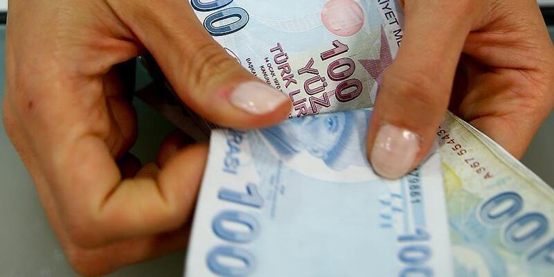 100 TL yüz tl türk lirası para zengin ekonomi