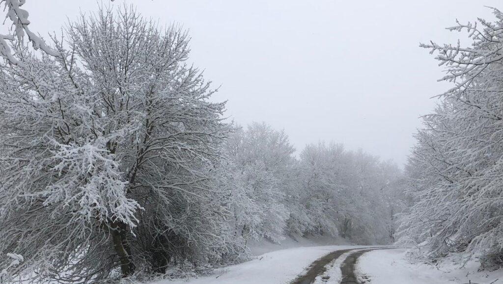 Uşak'a Kar Yağdı, Uşak'a Mevsimin İlk Karı Yağdı, Kartpostallık Görüntüler